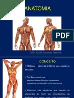 Sistema Muscular Esqueletico