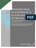 34.Programa de Auditor Tibasaso