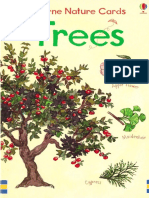 Trees Usborne Nature Cards Eng