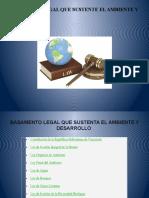 Basamento Legal Que Sustente El Ambiente y Desarrollo 2