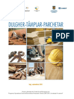 DULGHER.pdf
