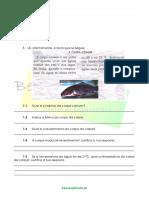 1.1-Diversidade-dos-animais-Forma-e-Revestimento-Ficha-Trabalho-1.pdf