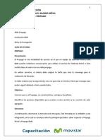 Manual Prepago
