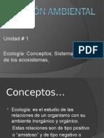 Gestion Ambiental I