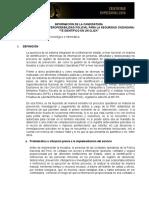 Interoperabilidad_desarrollo Tecnologico e Informatica