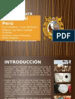 Manufactura Textil en El Perú