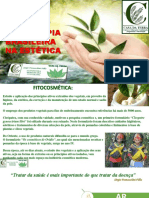 Fitoterapiabrasileiranaesttica 150213144204 Conversion Gate01