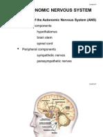 Lecture 4 Autonomic Nervous System