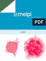 Meipi_Presentacion_grafica