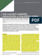 Auto Associative Amphiphilic