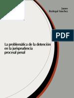 030-La Problemática de La Detención en La Jurisprudencia Procesal Penal