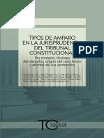 027 Tipos de Amparo en La Jurisprudencia Del Tribunal Constitucional