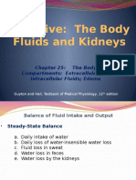192498408-renal-physiology-ch25.pptx