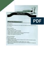 1125648Proyectos de Inversión.pdf