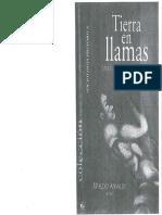 Ansaldi Waldi Tierra en llamas.pdf