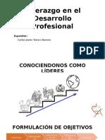 Liderazgo en El Desarrollo Profesional