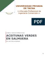 Proyecto de Exportación Aceitunas Verdes en Salmuera