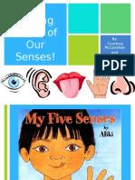 kine 443- making sense of our senses-2