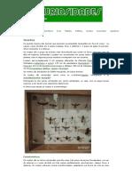 insetos.pdf