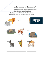 Quiz on Herbivore Carnivore Omnivore