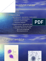 6910281 20 10 Parasitosis Intestinal