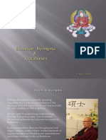 Estonian Nyingma and Databases