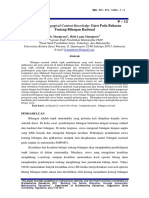 P 13.pdf