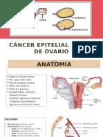 Cáncer Epitelial de Ovario