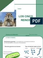5reinosdelanaturaleza-101019172948-phpapp01