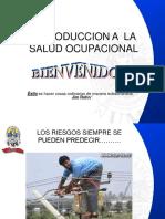Modulo Introducción a La Salud Ocupacional, Dra. Monica Correa