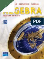 Álgebra, Primera Edición - Elena de Oteyza.pdf
