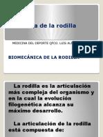 Anatomia de Rodilla