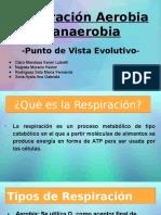 Respiración Aerobia y Anaerobia.pptx