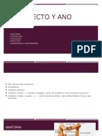 Anatopatolgía de Recto y Ano