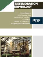 Stone Deteriation Morphology.pdf