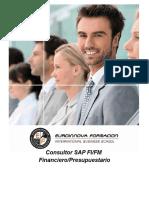 Consultor SAP FI/FM Financiero/Presupuestario
