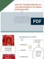 Adherencia in Vitro de Candida Albicans