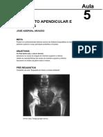 Aula 5 - Esqueleto Apendicular e Cinturas