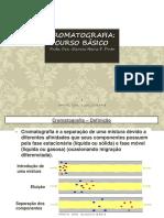 Cromatografia Curso Básico FACP 2014