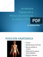 Anatomia_topografica.pdf