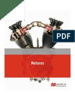 1Motores.pdf