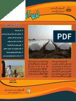 15 Amar Aziz Pindi Ghep_0