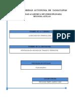 PERITACION EN HECHOS DE TRANSITO TERRESTRE(1).doc