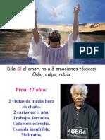 Magia Del Perdon