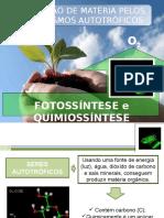 obtencaodemateriapelosseresautotroficos-fotossinteseequimiossintese