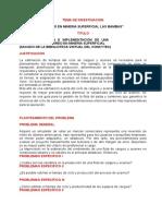 Estructura General Tema de Investigacion Pasar Por Skipe