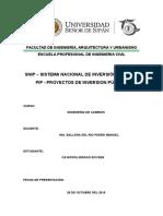 1 Snip - Proyectos de Inversion