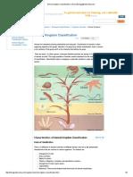Animal Kingdom Classification _ Chart _ Biology@TutorVista