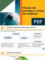 Ciclos de matéria.pptx