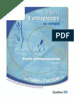 profil_entrepreneurial page 24.pdf